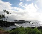 Dreams of Hawaiian days and nights