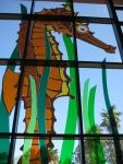 Fantastic window at the Scripps Aquarium, San Diego