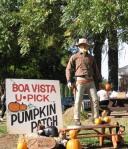 Boa Vista cowboy